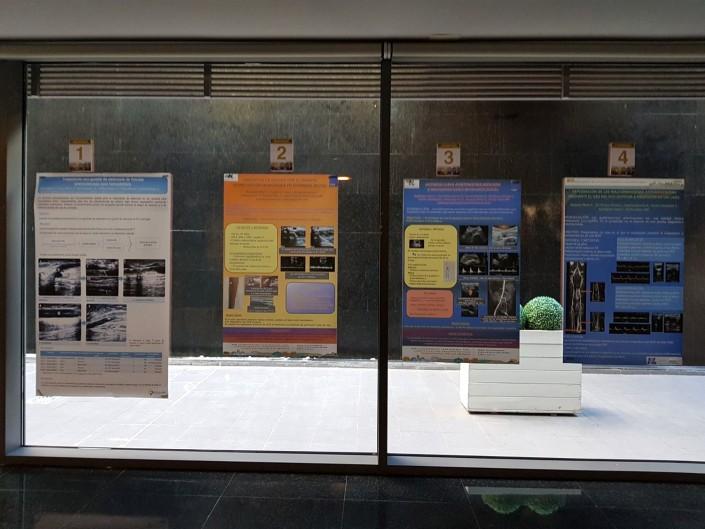Algunos de los póster presentados en el Congreso